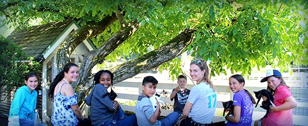 Summer camp staff apply now at farm camp in northern for Summer camp northern california